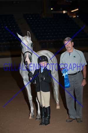 2013 Fall Charity Horse Show