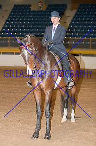 2012 Fall Charity Horse Show