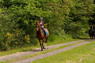 Natalie and Memo gallop up the road.  Elise and Narnia follow.
