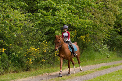 Natalie and Memo galloping up the road again.
