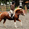 Snapshot gallery of images from the October 23rd 2010 Woodbrook Hunt Club 49th Annual Hunter Pace. Images Copyright © 2010 J. Andrew Towell All Rights Reserved. Please contact the copyright holder at troutstreaming@gmail.com to discuss any publication or commercial usage rights. Small web use images available upon request with any print order.