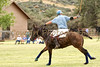 Skull Valley Polo : 1 gallery with 115 photos