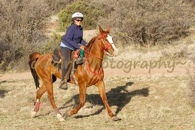 Prescott Chaparral-2013-0301