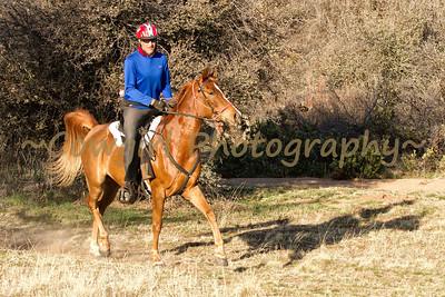 Prescott Chaparral-2013-0292