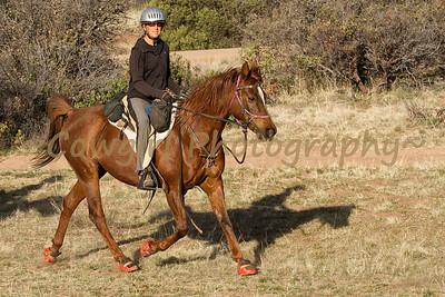 Prescott Chaparral-2013-0312