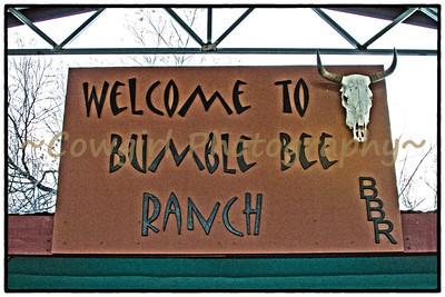 2014-Bumble Bee-0027