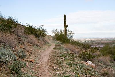 2018-Dashing Through The Trails-0007