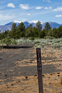 2019-Flagstaff Monsoon Fever-0004