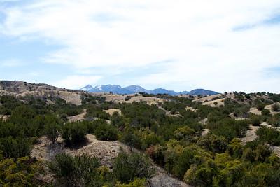 2021-Old Pueblo-0004