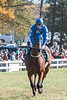Montpelier Races 2019-7871