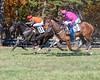 Montpelier Races 2019-7726