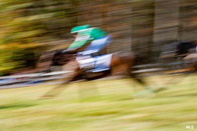 Montpelier Races 2019-8159