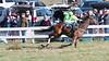 Montpelier Races 2019-7988
