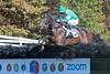 Montpelier Races 2019-7678