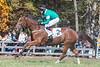 Montpelier Races 2019-7740