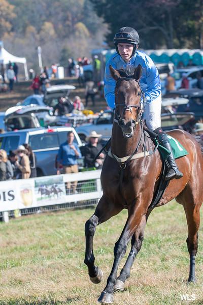 Montpelier Races 2019-7903