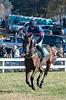 Montpelier Races 2019-7891