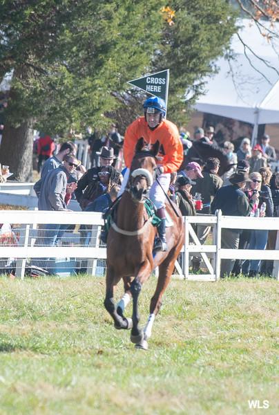 Montpelier Races 2019-7873