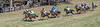 Montpelier Races 2019-7938