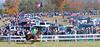 Montpelier Races 2019-7986