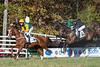 Montpelier Races 2019-8111