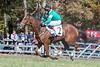 Montpelier Races 2019-7739