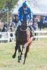 Montpelier Races 2019-7866
