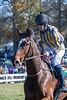 Montpelier Races 2019-7914
