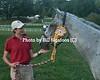 Middleburg Horse Trials-0844