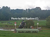 Middleburg Horse Trials-0816