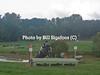 Middleburg Horse Trials-0816