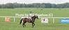 Middleburg Horse Trials-7202