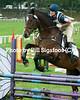 Middleburg Horse Trials-0764