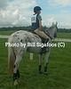 Middleburg Horse Trials-0793
