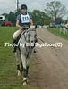 Middleburg Horse Trials-0804