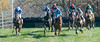 Montpelier Hunt Races 2013-0659