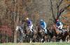 Montpelier Hunt Races 2013-0703