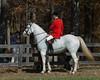 Montpelier Hunt Races 2013-0651