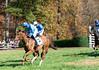 Montpelier Hunt Races 2013-0671