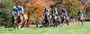 Montpelier Hunt Races 2013-0666