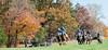 Montpelier Hunt Races 2013-0663
