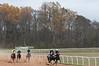Montpelier Hunt Races 2014-0662
