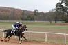 Montpelier Hunt Races 2014-0670