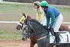 Montpelier Hunt Races 2014-0649