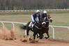 Montpelier Hunt Races 2014-0667