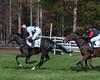 Montpelier Steeplechase 2012-8465