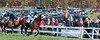 Montpelier Steeplechase 2012-8475