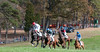 Montpelier Steeplechase 2012-8459