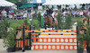 UpperVille Jumper Classic-5539