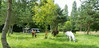 Les Abrons Riding 2014-1070940